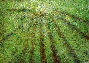 Sobre Los Arboles | Abraham Gustin | Título: Desde la Luz