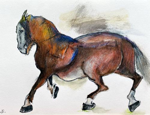 Caballos | Horses | P07
